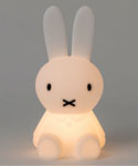 BUNDLE OF LIGHT 