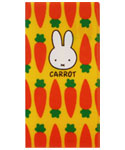 チケットホルダー