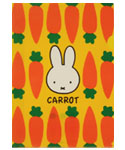 A4クリアファイル