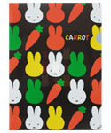 A4クリアホルダー